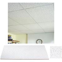 Suspended Ceiling Tile