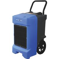 Dehumidifiers and Moisture Absorbers