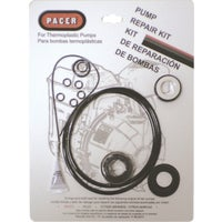 P-58-0074 Pacer Pumps Seal Kit