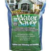 11205 Water Saver Grass Seed grass seed
