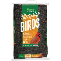 13591 Best Garden Black Oil Sunflower Seed seed sunflower