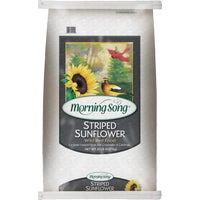 12023 Morning Song Striped Sunflower Seed seed sunflower