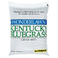 50203 Wonderlawn Kentucky Bluegrass Grass Seed grass seed
