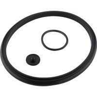 R31C Gilmour Pump Seal Kit R31C, Pump Seal Kit