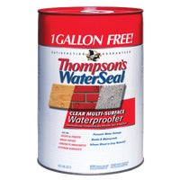 TH.024106-06 Thompsons WaterSeal VOC MultiSurface Waterproofing Sealer sealer waterproofing