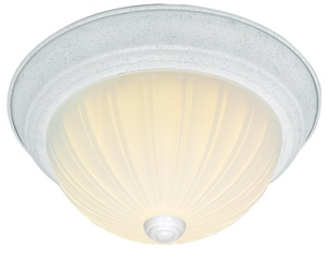 5 in. 60W 2-Light Medium Base Incandescent Ceiling Light in Textured White