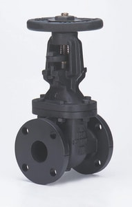 2-1/2 in. Cast Iron Flanged Gate Valve