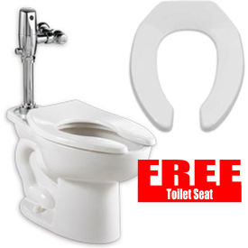 "761018 American Standard Madera Elongated 15""H Toilet, 1.1-1.6 GPF with Free Toilet Seat"